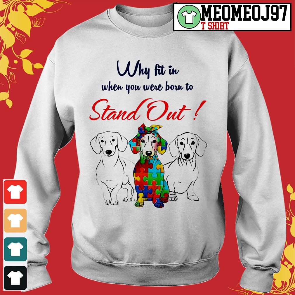 Dogs why fit in when you were born to stand out Sweater