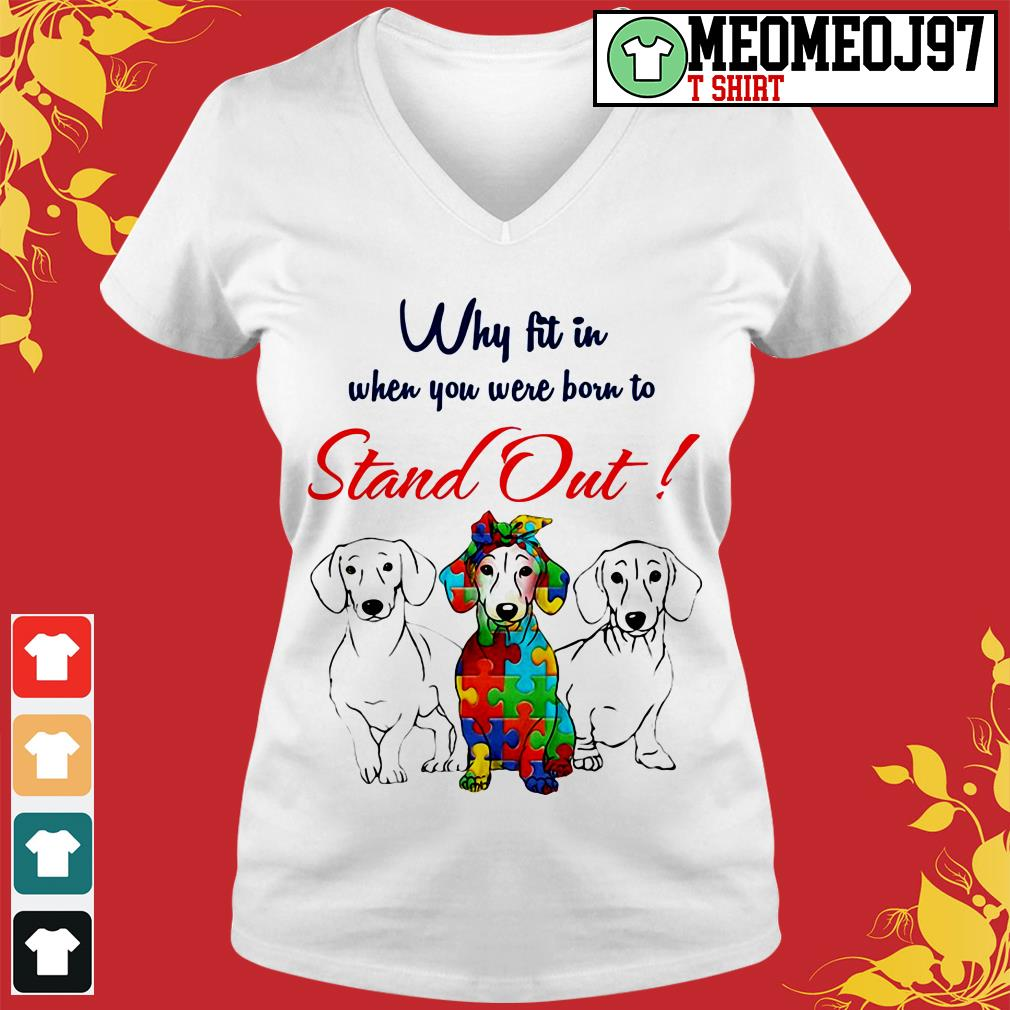 Dogs why fit in when you were born to stand out V-neck t-shirt